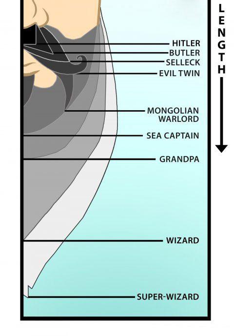 Infografias de barbas