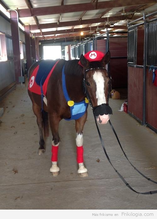 Caballo disfrazado Mario Bross